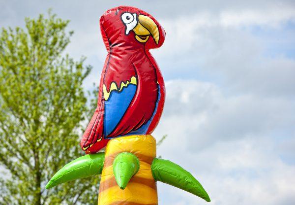 klimtoren piraat papegaai